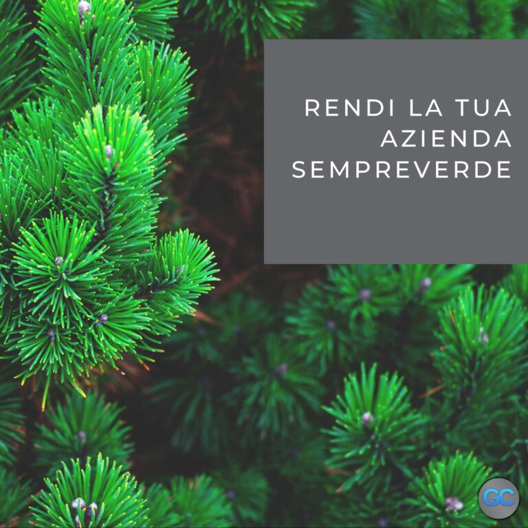 Rendi la tua azienda sempreverde con il social media advertising